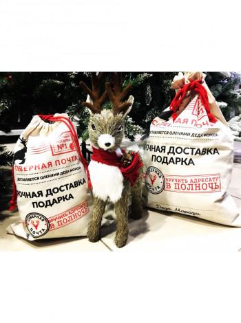 Пакет подарочный Срочная доставка подарков